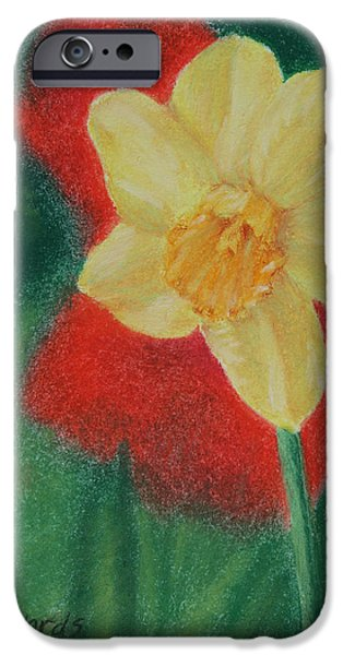 Thinking Pastels iPhone Cases - Daffodil and Poppies iPhone Case by Marna Edwards Flavell