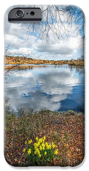 Daffodil Lake iPhone Case by Adrian Evans
