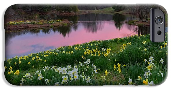 Recently Sold -  - Pastel iPhone Cases - Daffodil Sunset Square iPhone Case by Bill  Wakeley