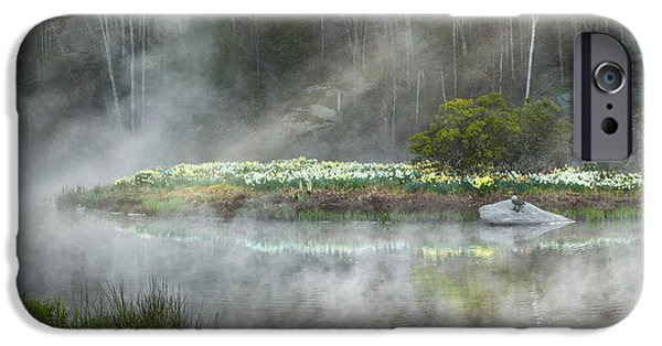 Geese iPhone Cases - Daffodils Of The Fog iPhone Case by Bill  Wakeley
