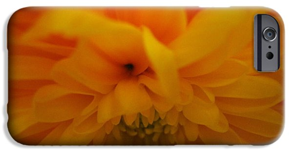Flora Drawings iPhone Cases - Dahlia Abstract iPhone Case by Tara  Shalton