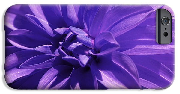 Business iPhone Cases - Dahlia iPhone Case by Tony Cordoza