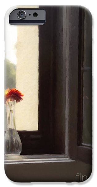Dahlia iPhone Cases - Dahlias in the Window iPhone Case by Diane Diederich