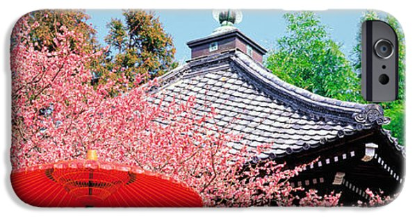 Cherry Blossoms iPhone Cases - Daikaku-ji Kyoto Japan iPhone Case by Panoramic Images