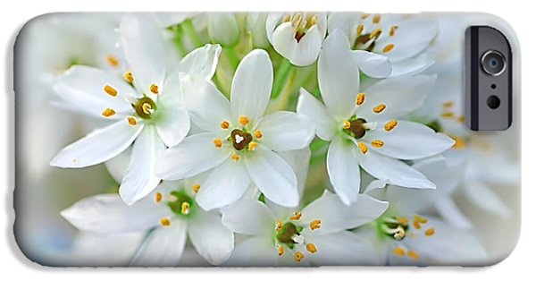 Star Of Bethlehem iPhone Cases - Dainty Spring Blossoms iPhone Case by Kaye Menner