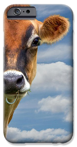 Dairy Cow  Bessy iPhone Case by Bob Orsillo