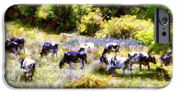 A Hot Summer Day iPhone Cases - Dairy Cows in a Summer pasture iPhone Case by Janine Riley