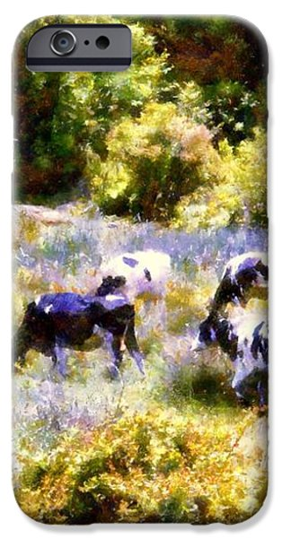 Dairy Cows in a Summer pasture iPhone Case by Janine Riley