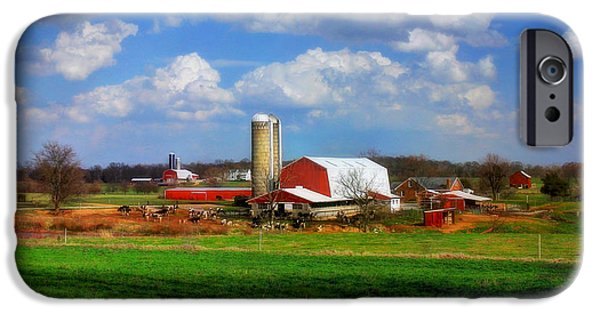 Old Barn iPhone Cases - Dairy Land iPhone Case by Reid Callaway