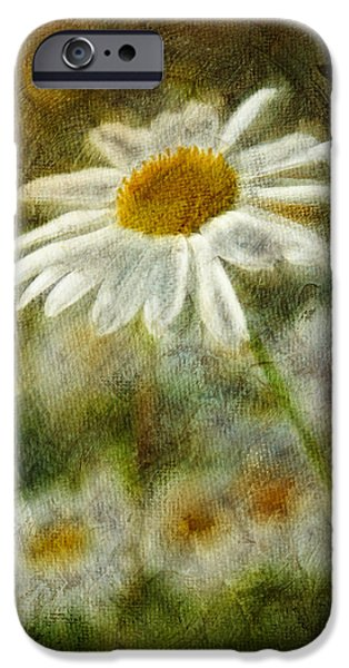 Wild Digital Art iPhone Cases - Daisies ... again - p11at01 iPhone Case by Variance Collections