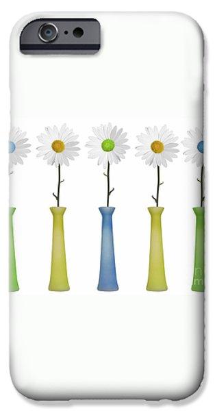 Daisies iPhone Case by Diane Diederich