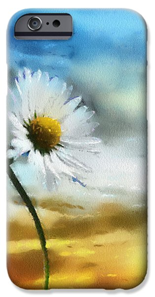 Daisies in Love iPhone Case by Anthony Caruso