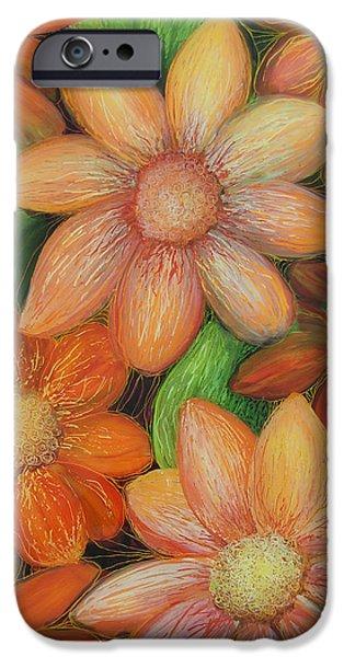 Daisy Bouquet iPhone Case by Anna Skaradzinska