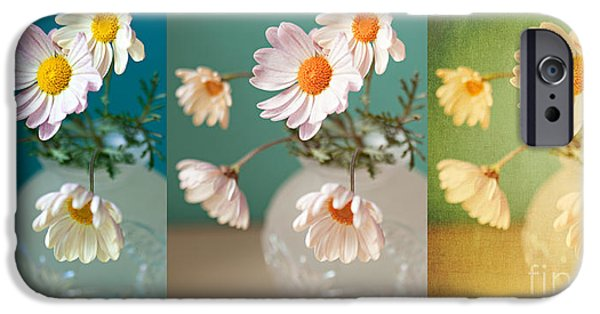 """indoor"" Still Life Digital Art iPhone Cases - Daisy Daydreams iPhone Case by Susan Gary"