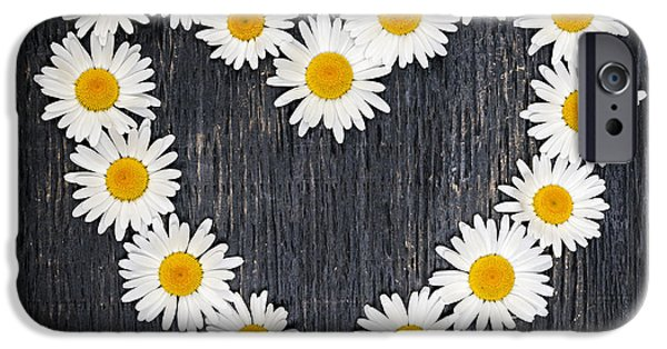 Board iPhone Cases - Daisy heart iPhone Case by Elena Elisseeva