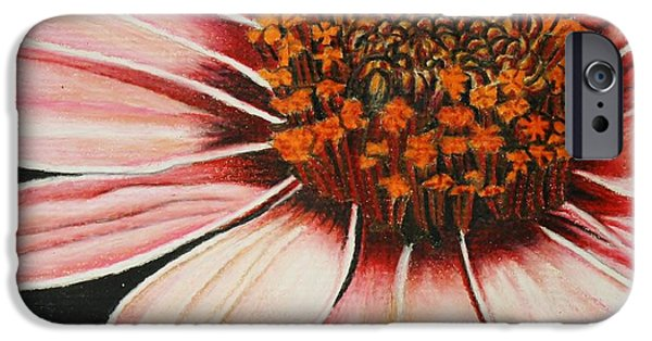 Flora Drawings iPhone Cases - Daisy in Pink iPhone Case by Bruce Bley