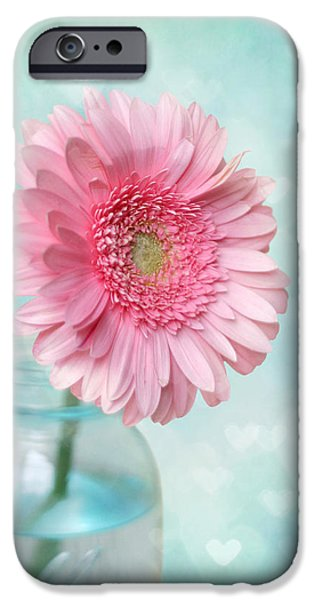 Pinks iPhone Cases - Daisy Love iPhone Case by Amy Tyler