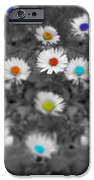 Daisy Rainbow iPhone Case by Mark Rogan