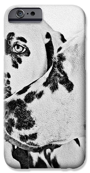 Dalmatians - A Great Breed for the Right Family iPhone Case by Christine Till