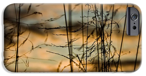 Abstractions iPhone Cases - Dance of evening wind iPhone Case by Igor Isachenko