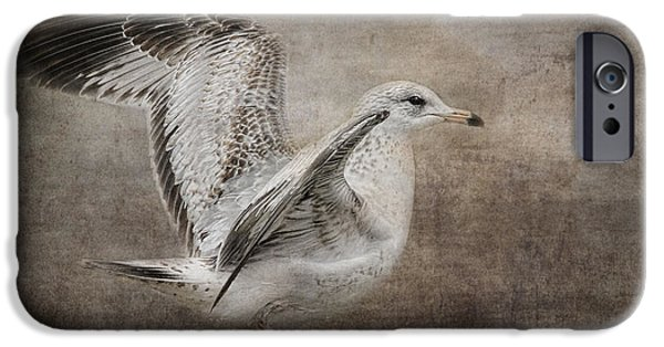 Sea Birds iPhone Cases - Dance of the Lone Gull iPhone Case by Jai Johnson