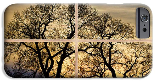 Epic iPhone Cases - Dancing Forest Trees Picture Window Frame Photo Art View iPhone Case by James BO  Insogna