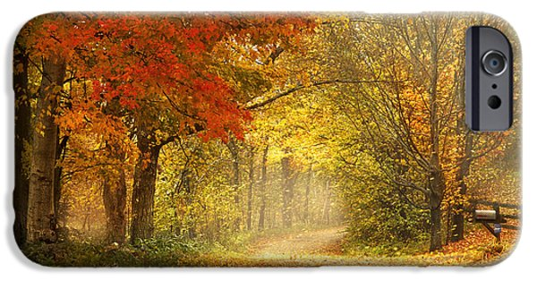 Autumn Woods iPhone Cases - Dancing Leaves iPhone Case by Magda  Bognar