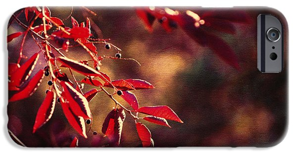 Red Leaf Digital Art iPhone Cases - Dancing Leaves iPhone Case by Maria Angelica Maira