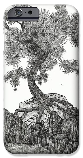 Flora Drawings iPhone Cases - Dancing Pine iPhone Case by Margaretha Yvs Mynk