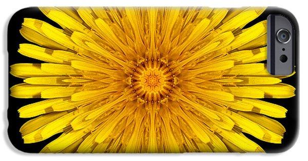 David J Bookbinder iPhone Cases - Dandelion Flower Mandala iPhone Case by David J Bookbinder