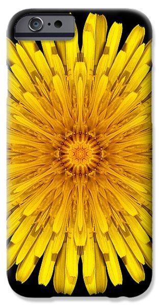 Dandelion Flower Mandala iPhone Case by David J Bookbinder