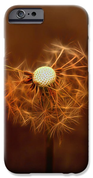 Wine Art Paining Mixed Media iPhone Cases - Dandelion Glow iPhone Case by Linda Muir