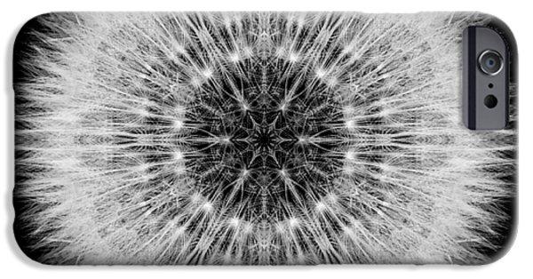 David J Bookbinder iPhone Cases - Dandelion Head Flower Mandala iPhone Case by David J Bookbinder