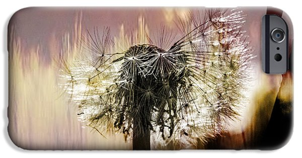 Copy Mixed Media iPhone Cases - Dandelion in summer iPhone Case by Toppart Sweden