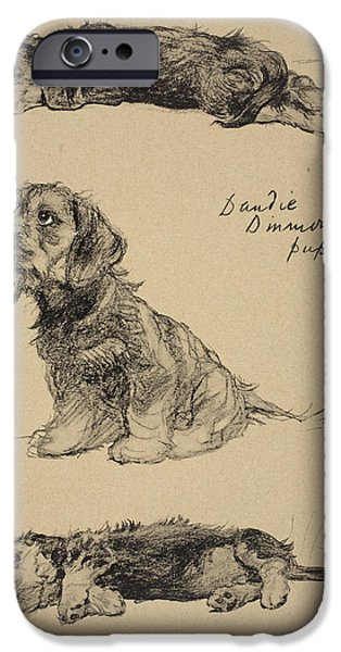 Black Dog iPhone Cases - Dandie Dinmont Puppies, 1930 iPhone Case by Cecil Charles Windsor Aldin