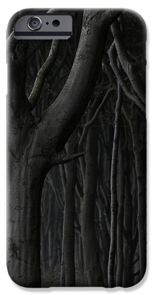 Dark Forest iPhone Case by Heiko Koehrer-Wagner