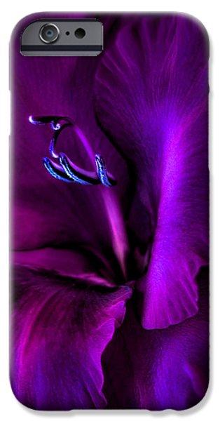 Dark Knight Purple Gladiola Flower iPhone Case by Jennie Marie Schell