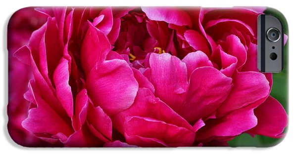 Dark Pink iPhone Cases - Dark Pink Peony iPhone Case by Sandy Keeton