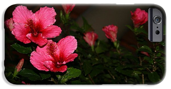 Cora Wandel iPhone Cases - Dark Red Flowers iPhone Case by Cora Wandel