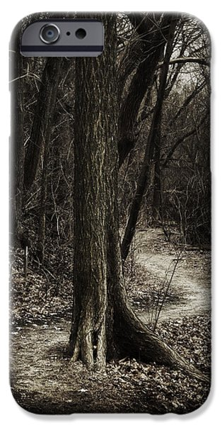 Walk Paths iPhone Cases - Dark Winding Path iPhone Case by Scott Norris