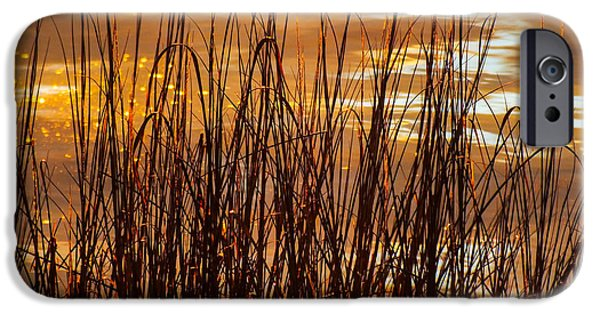 Reflections Of Nature iPhone Cases - Dawns Early Light iPhone Case by Karen Wiles