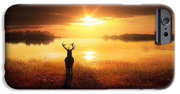 Deer Digital iPhone Cases - Dawns Golden Light iPhone Case by Jennifer Woodward