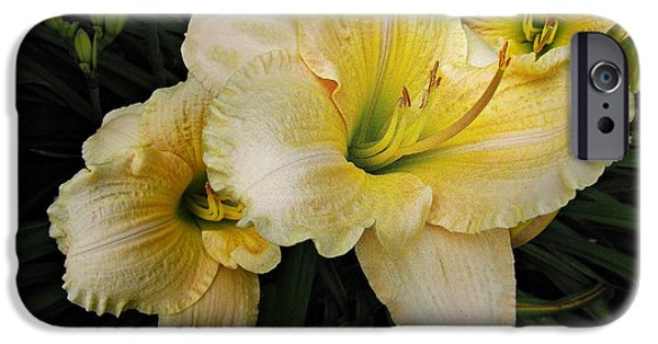 Day Lilies iPhone Cases - Day lilies a short life iPhone Case by David Dehner