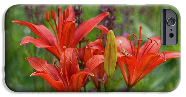 Garden Scene Photographs iPhone Cases - Lilies and Foe iPhone Case by Kae Cheatham