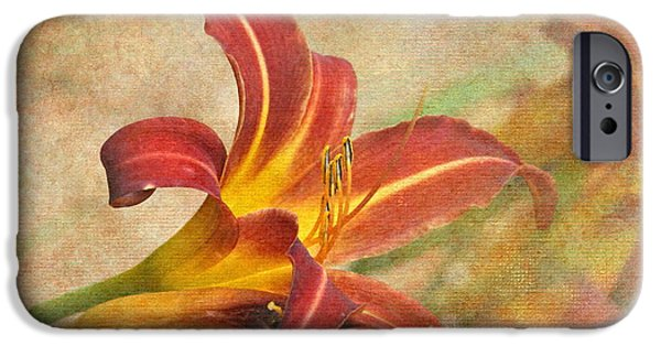 Day Lilies iPhone Cases - Day Lily iPhone Case by Angie Vogel