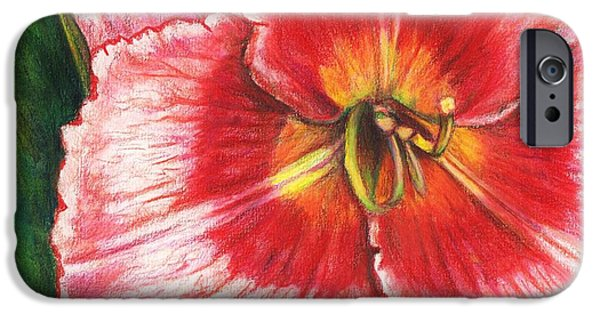 Flora Drawings iPhone Cases - Daylily Delight iPhone Case by Shana Rowe