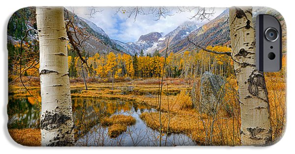 Beauty Mark iPhone Cases - Dazzling Fall Foliage iPhone Case by Mark Whitt