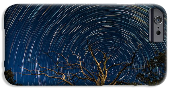 Twinkle iPhone Cases - Dead oak with star trails iPhone Case by Paul Freidlund