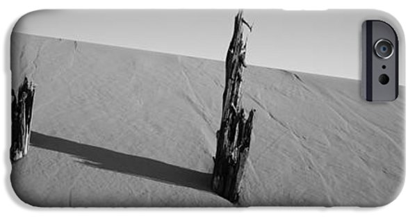 Sand Dunes iPhone Cases - Dead Pine Tree At Coral Pink Sand Dunes iPhone Case by Panoramic Images