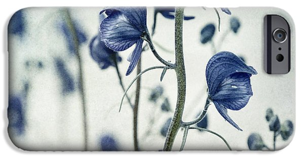 Flora iPhone Cases - Deadly Beauty iPhone Case by Priska Wettstein